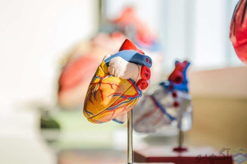اولین قلب مصنوعی جهان با موفقیت پیوند زده شد